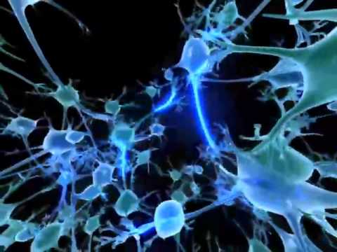 stem cell treatment for alzheimers ad treatment with neural cells