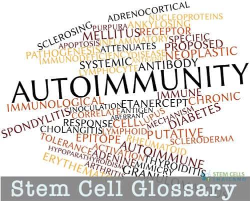 stem cell glossary