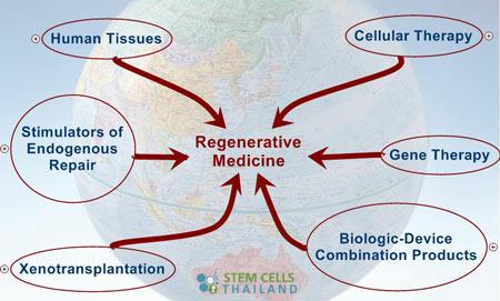 regenerative-medicine