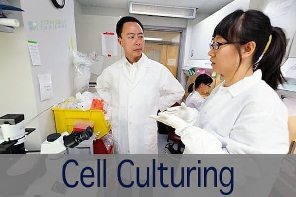 Cell-culturing-lab-bangkok-thailand