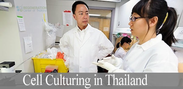 cell-culturing-thailand