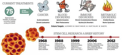 history-stem-cell-cord-blood