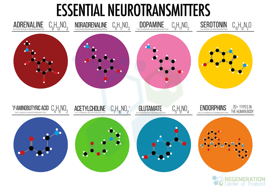 structures-of-neurotransmitters