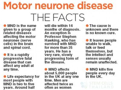 motor-neuron-disease-the-facts
