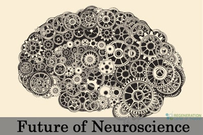 future of neuroscience