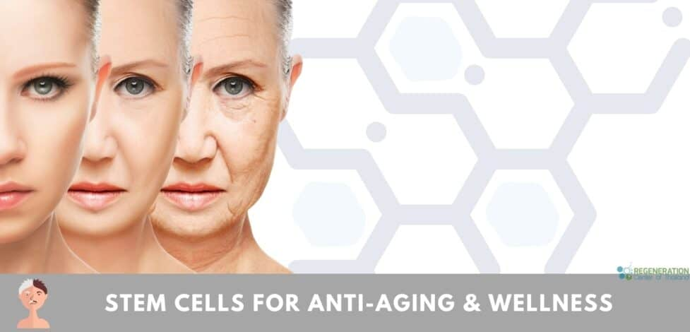 stemcells anti aging wellness