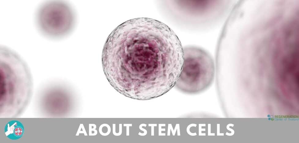 about-stem-cell-therapy