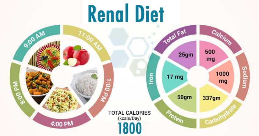 Renal-failure-Diet-stemcells